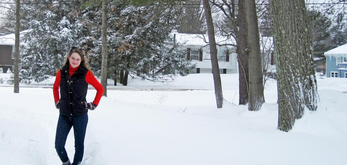 snowyFI