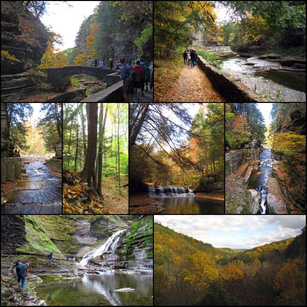 Day Hike at Robert Treman State Park